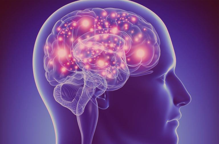 Neurociência e Educação: como ela pode ajudar na aprendizagem