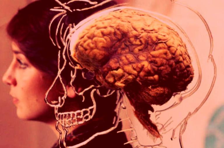 A visão da Neurociência sobre as Competências e Habilidades presentes no Currículo escolar