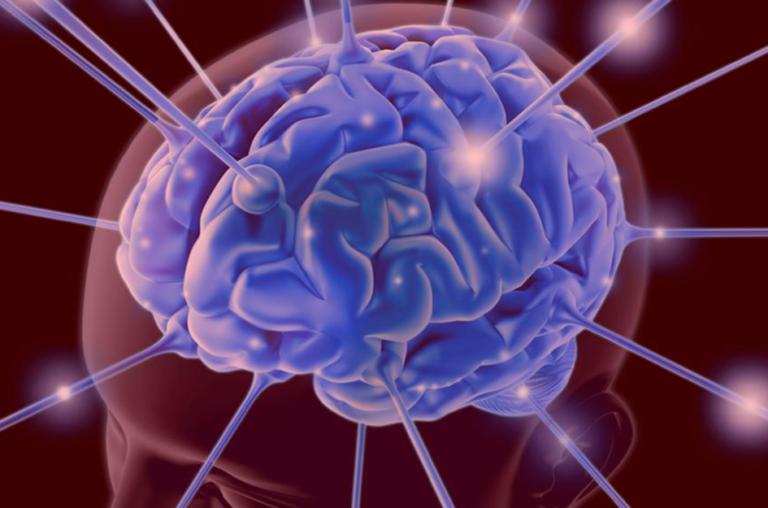 Na Neurociência, a representação do erro para o cérebro humano