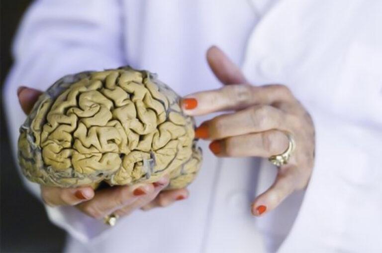O cérebro pós-moderno: a geração cortisol