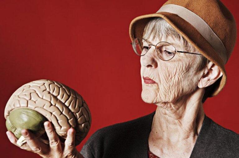 Cérebro na terceira idade: como vai a sua memória?