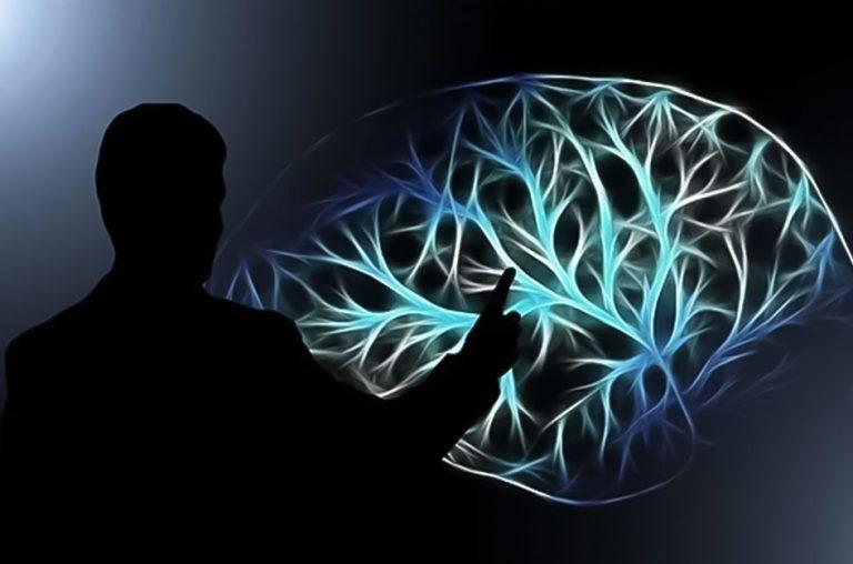A Política Pública praticada por cérebros de via única